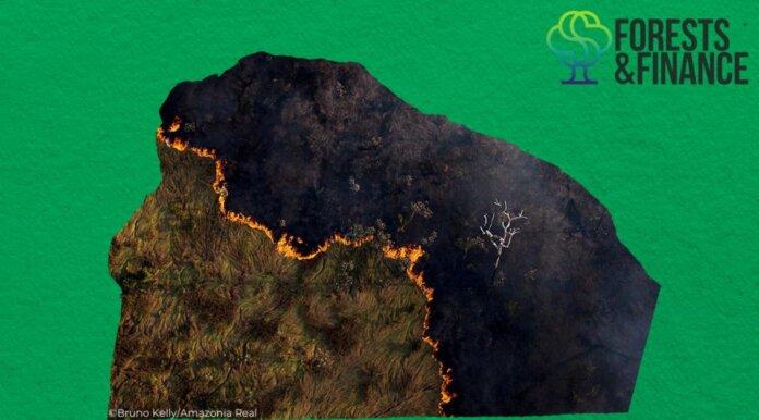 mapa brasil queimadas